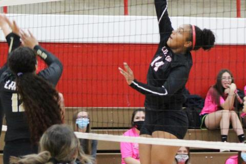 Brownfield Lady Cubs VOLLEYBALL