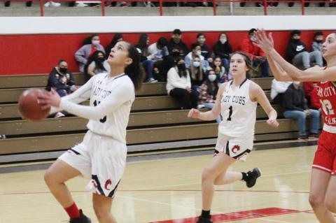 Lady Cubs dominate Fillies in district restart