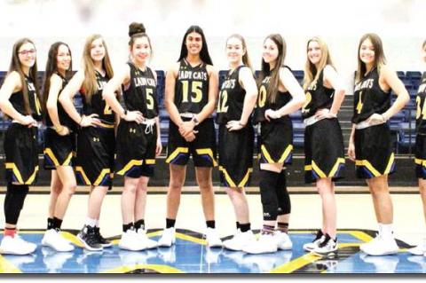 Wellman-Union Lady Cats