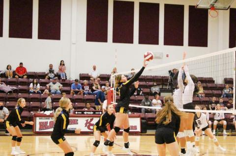 Lady 'Cats volleyball snap losing streak