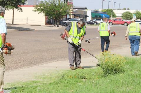 City Council members clean up the city