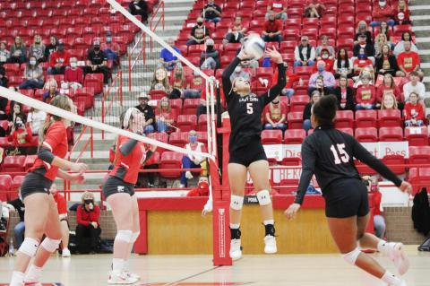 Lady Cubs fall in semi to Lady Eagles