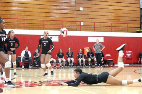 Lady Cubs volleyball earn tough win over Lady Steers