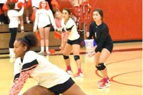 Lady Cubs drop match to Shallowater
