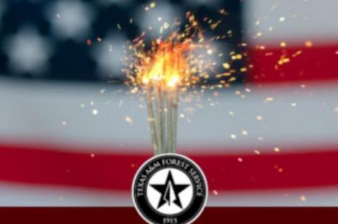Texans should be safe, careful this Fourth of July weekend