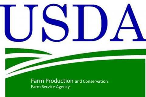 The Terry County FSA deadlines for the 2021 crop year are: