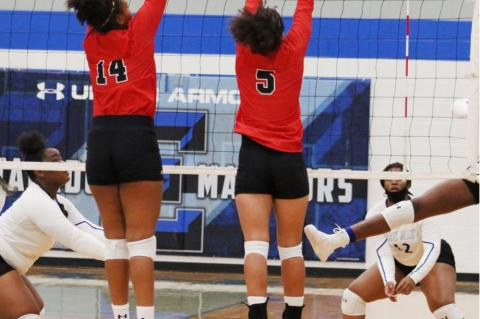 Lady Cubs Volleyball take win over Ladys Mats
