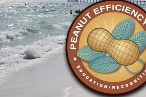 Texas peanut farmers and Florida beaches