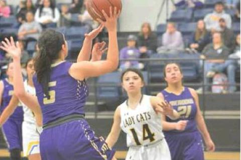 Lady Broncos top Lady Cats in rivalry match up