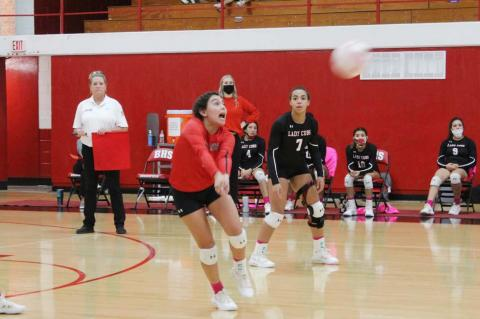Lady Cubs win district finale await playoff fate