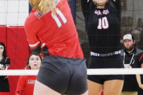 Lady Cubs sweep into regional semifinals