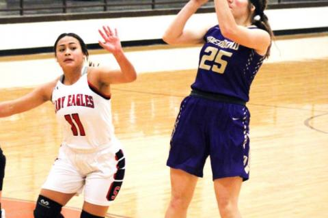 Year-In-Review, Terry County Girls Hoops