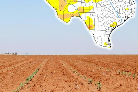 Extreme drought could be possible for Terry County