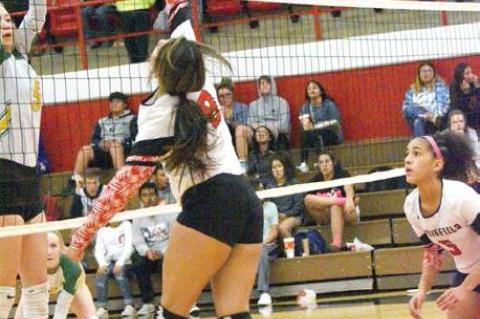 Lady Cubs head to playoffs