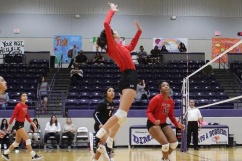 Lady Cubs defeat Bobbies on Saturday