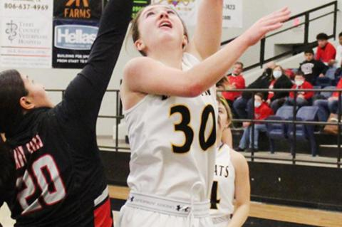 Lady 'Cats lose third in a row