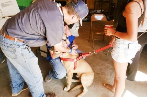 Bark in the Park returns after hiatus due to COVID