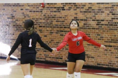 Lady Cubs volleyball overcome slow start in sweep