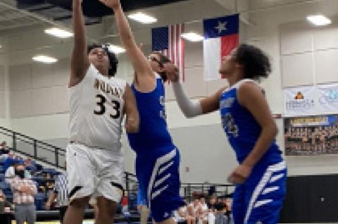 Wildcats snap five-game losing streak at home